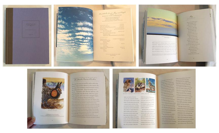 2014 SITFH field journal images